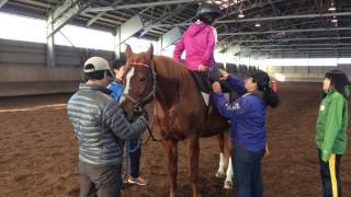 2016年2月20日~21日 『乗馬療育』実践研修会  ~北海道で馬と人を感じ、考える 2 日間!~ を開催します