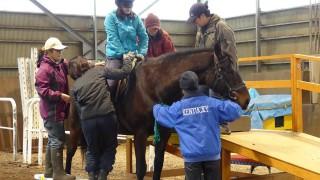 2016年2月20日(土)〜21日(日)浦河町にて『乗馬療育』実践研修会~北海道で馬と人を感じ、考える2日間~をおこないました