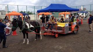 2016年3月27日(日)バリアフリー馬車に乗ろう!&ポニーふれあい体験in千葉を開催します。