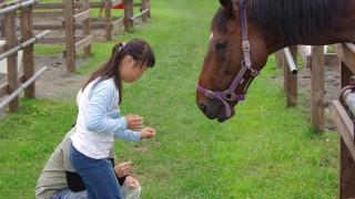 2016年8月1~3日『親子で楽しむユニ馬ーサルデザインツアー』開催しました!