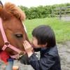 【満員御礼】2017年2月11日(祝・土) 馬は理想のセラピスト@東京国際フォーラムを開催します!